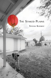 the-staked-plains-cover